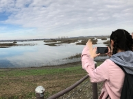 Birdwatching at Llano Seco field trip